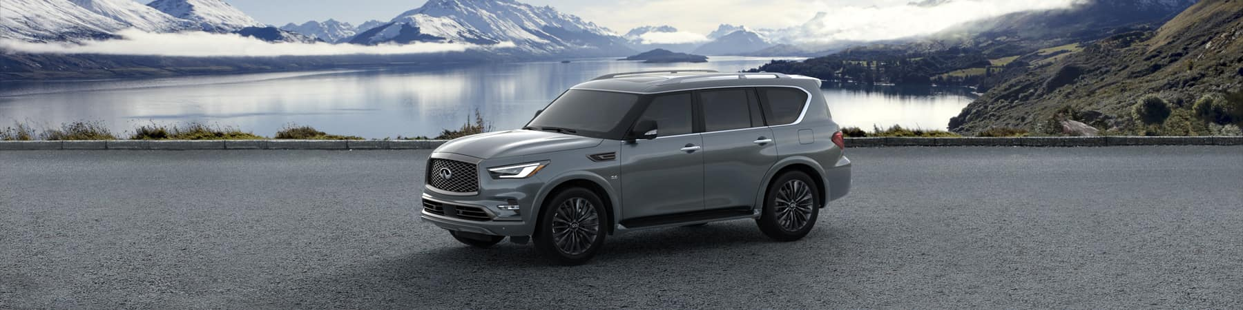 2019 INFINITI QX80 in Charleston SC