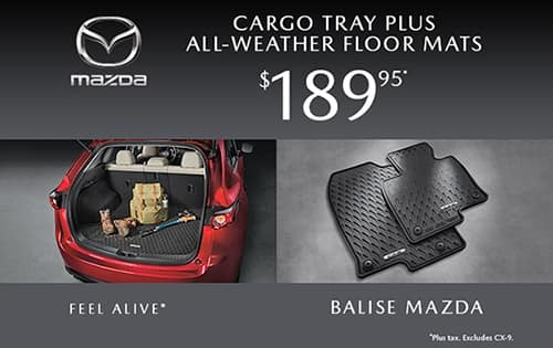 All-Weather Floor Mats and Cargo Tray Special