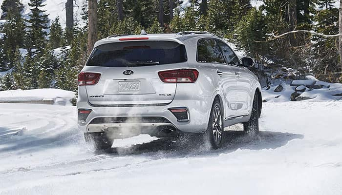 2019 Kia Sorento Traction Control