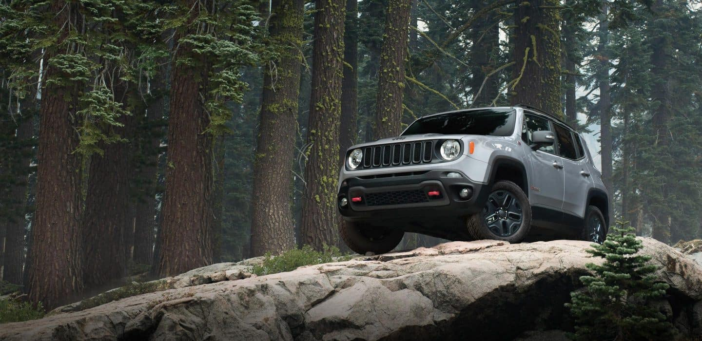 jeep renegade up on mountain surrounded by trees