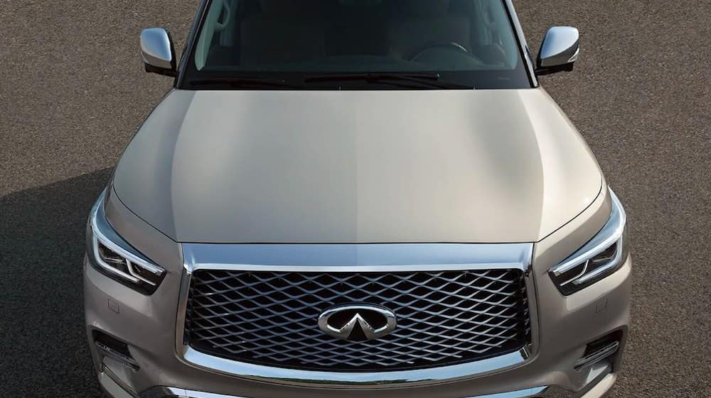 2019 INFINITI QX80 front view of hood grille and windshield