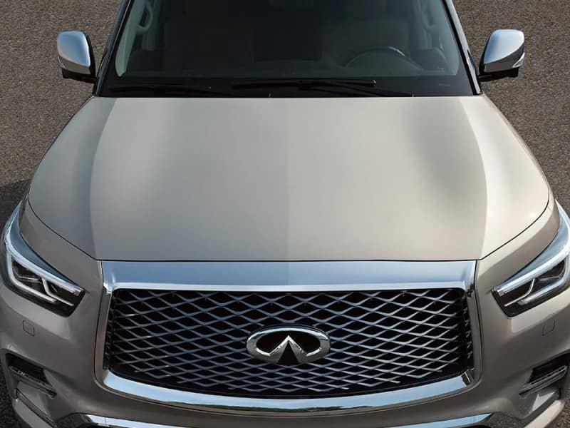 The 2019 INFINITI QX80 available at Herrin-Gear INFINITI in Jackson, MS