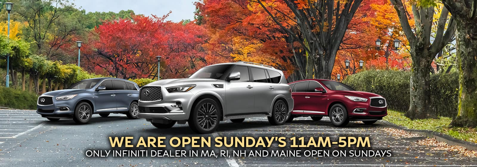 Open Sundays 11AM-5PM