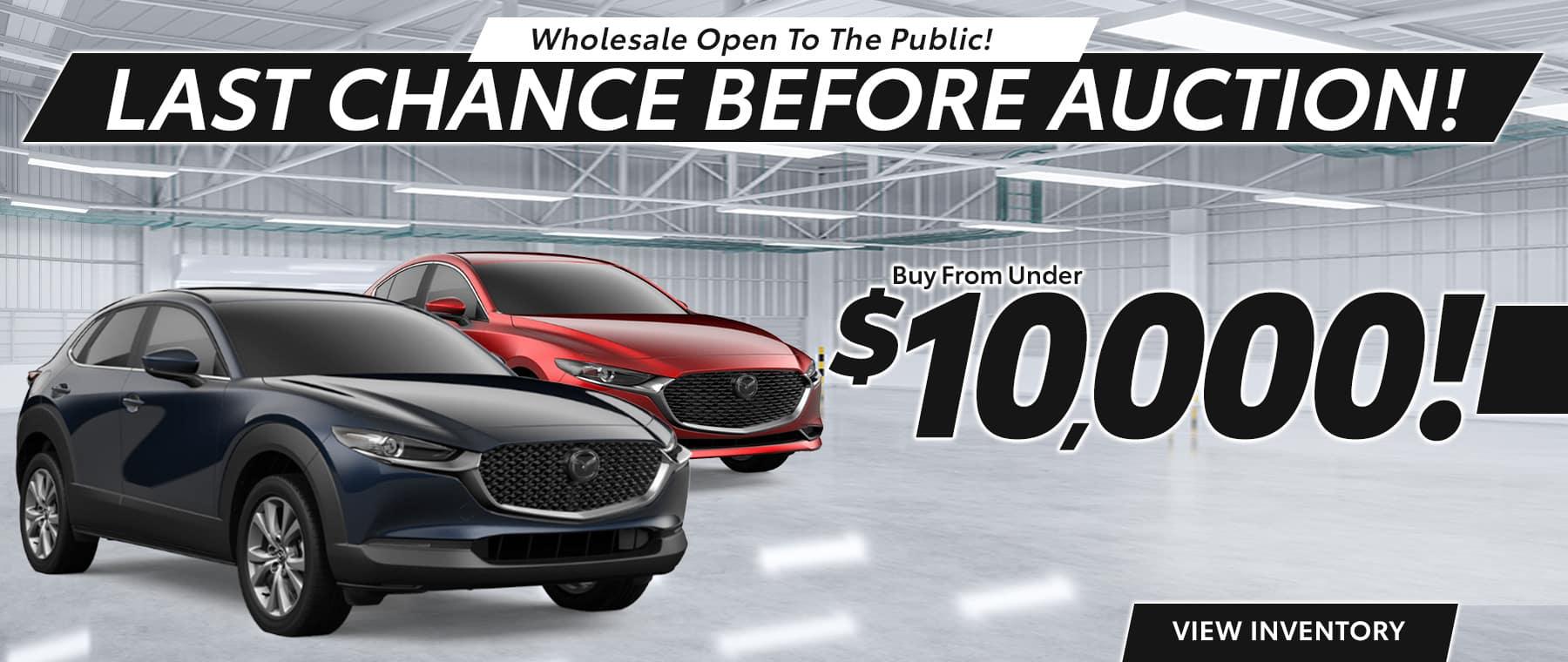 Wholesale Open to the Public!