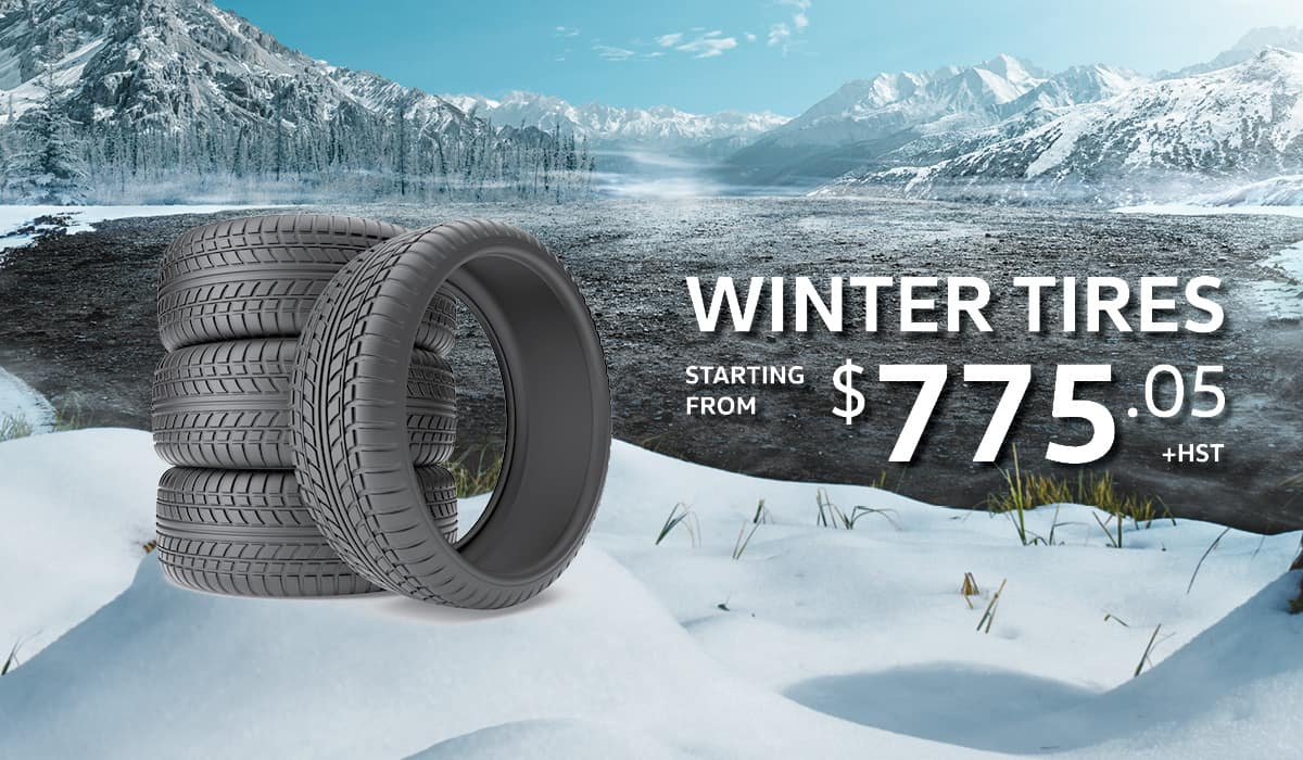 Winter Tire Banner