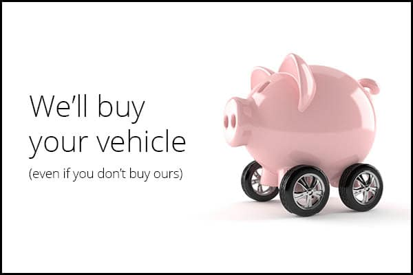 """""""We'll buy your vehicle"""" mobile banner"""