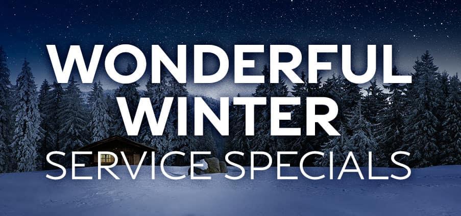 Wonderful Winter Service Specials
