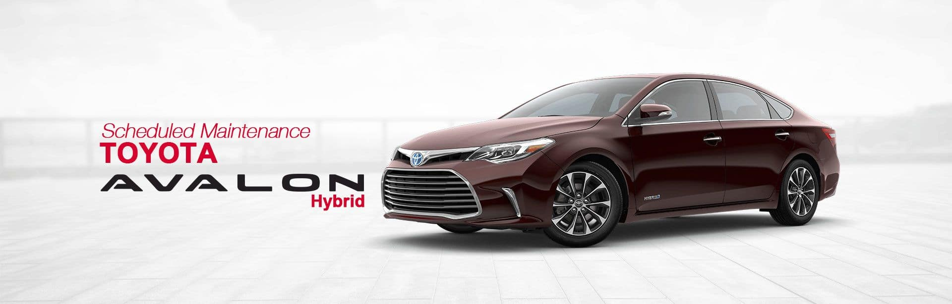 toyota avalon hybrid xle premium review webcarz