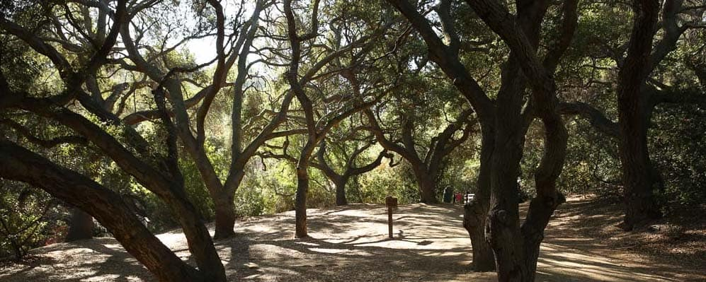 Hiking Trails Anaheim CA
