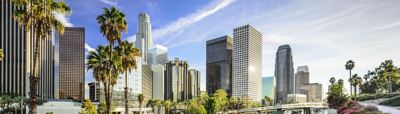 Anaheim Skyline
