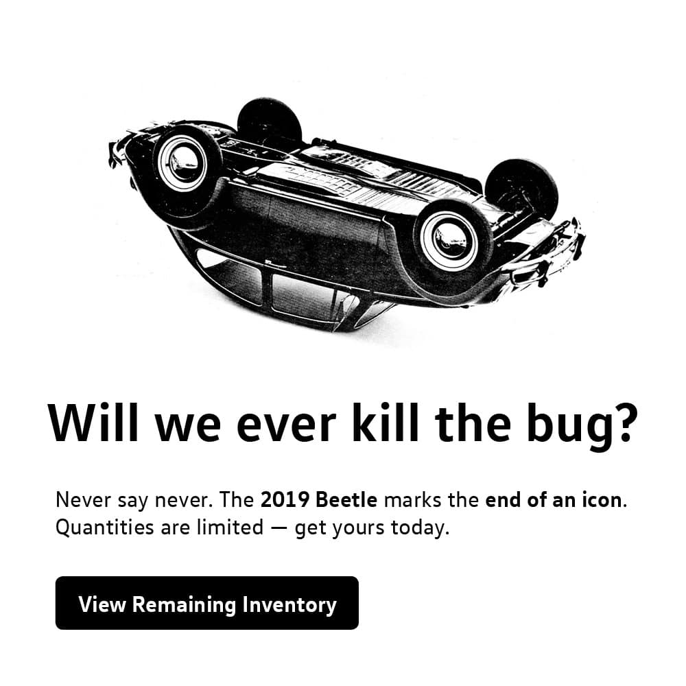 Farewell Beetle